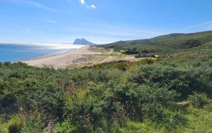 Verdemar-Ecologistas en Acción rechaza el proyecto de interconexión eléctrica entre la ciudad de La Línea y Ceuta. Un proyecto obsoleto a todas luces.