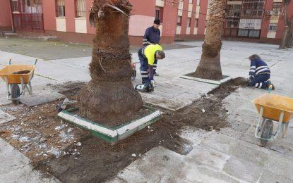 Mantenimiento Urbano realiza trabajos de reposición de acerados en distintos puntos de la ciudad