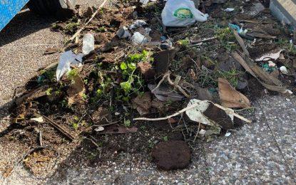 Limpieza y Mantenimiento Urbano actúan contra vertederos incontrolados en distintos puntos de la ciudad