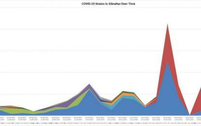 Nuevos resultados de análisis muestran la predominancia de las variantes española y británica de Covid-19 en el Peñón entre diciembre y enero