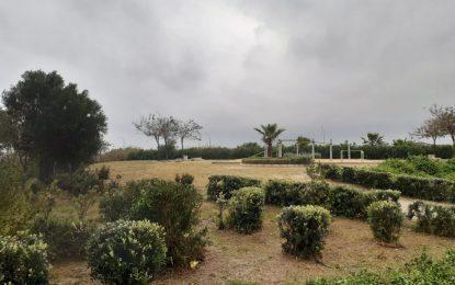 Parques y Jardines desarrolla una campaña de choque en el Parque de Torrenueva y sus inmediaciones
