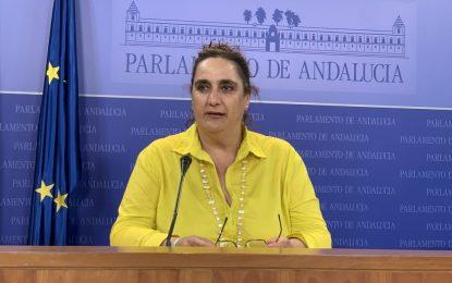 Aguilera defiende que la subestación no se instale en la comarca y defiende un cambio de modelo energético que no responda a los intereses de determinadas empresas privadas