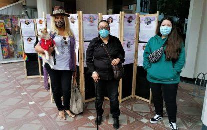 Orgullo y Diversidad organiza una exposición para hacer visibles a las mujeres lesbianas