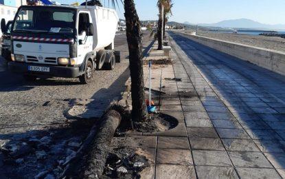 El Ayuntamiento lamenta la quema de nuevo mobiliario urbano y de playas tras el recrudecimiento de los actos violentos