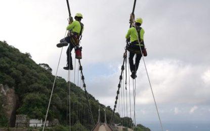 El puente Windnsor vuelve a estar abierto al público tras concluir los trabajos de mantenimiento