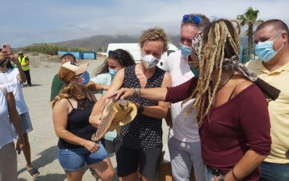 Raquel Ñeco y Rafael León asisten a la suelta de una tortuga boba en la playa de Torrenueva