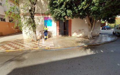 Los trabajos de desinfección de Limpieza se han desarrollado en la zona de Los Junquillos