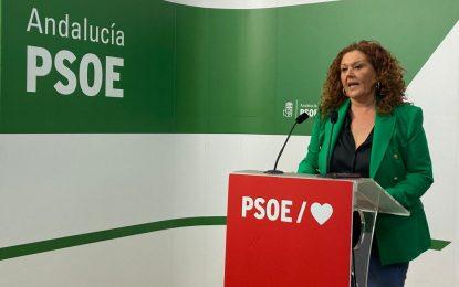 """Maese: """"Irene García está legitimada para continuar con un proyecto sólido para la provincia y el partido"""""""